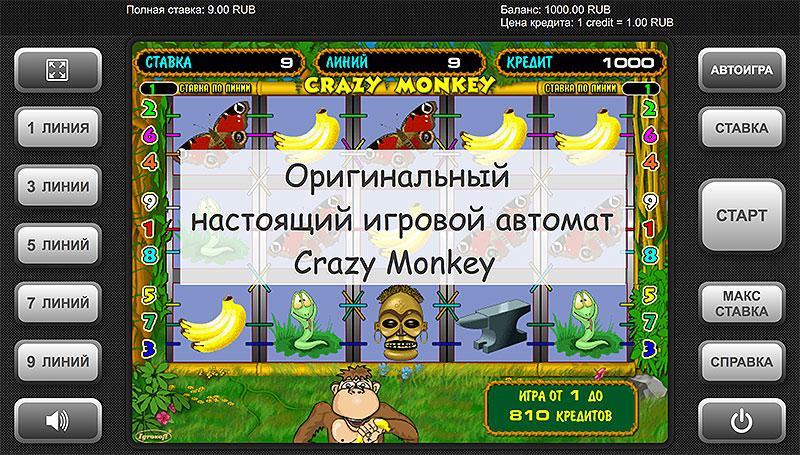 Как выглядит настоящий игровой автомат Crazy Monkey